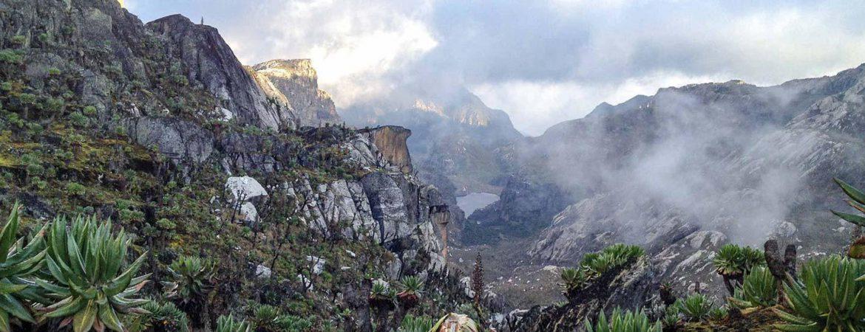 13 Days Rwenzori Hike & Bwindi Gorilla Trekking