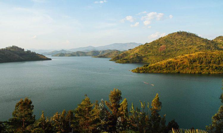 4 Days Nyungwe Forest & Lake Kivu Safari